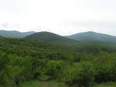 View across the Doiran battlefield