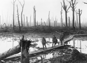 Chateau Woods, 3rd Battle of Ypres 1917